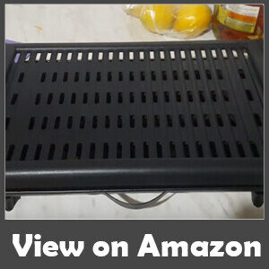 Best Indoor Grill For Meat